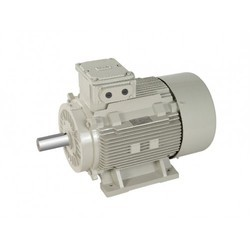 TEFC Induction Motor
