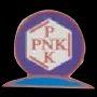 Pinaka Ink Solution