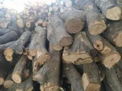 Mango Wood Logs