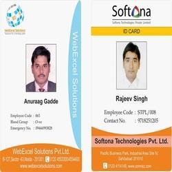 plastic pvc rectangular employee id cards rs 9 piece id