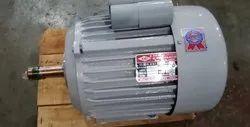 3 HP Atta chaki Electric Motor