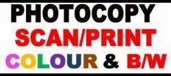 Paper Color Print Out, Location: Kolkata, Digital