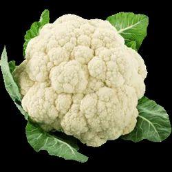 Fresh Vegetables White Cauliflower, Packaging: Plastic Bag or Polythene Bag