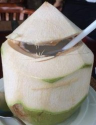 A Grade pelling THAI YOUNG COCONUT, Packaging Size: 50 Kg, Coconut Size: Large