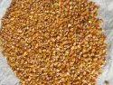 Bhagwati Tradin Yellow A Grade Raw Maize, High In Protein
