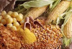 A Grade orgabic Sweet corn, Dry corn, PP Bag, Packaging Size: 50 Kg