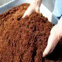Cocopeat for mushroom farming