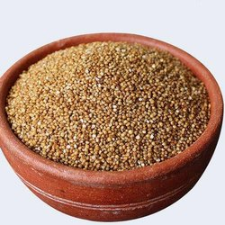 Brown Kodo Millet, Packaging Size: 25 kg, High in Protein