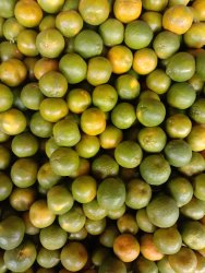 Orange sulphided Juice, Packaging Type: Barrels