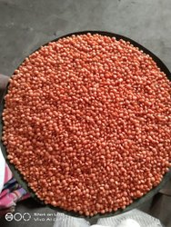 Red Masoor Dal