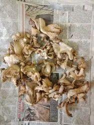 Full Dry Mushroom