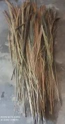 Green Broom Grass, For Cleaning