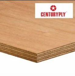 Century Plywood, For Furniture, Matte