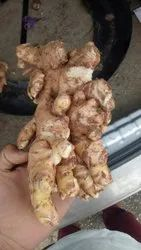 A Grade Pink Fresh Ginger, Packaging Size: 60, 8 Months Old