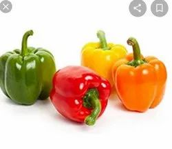 Red Capsicum Mix Colour Seed