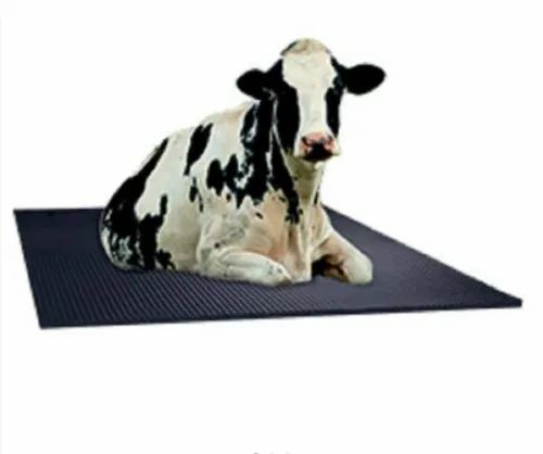 Cow Mat At Rs 1400 Roll Gurdaspur Id 22921963630
