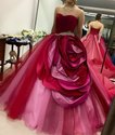 Designer Ball Gown
