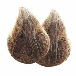 Solid A Grade Fully Husked Coconut, Packaging Size: 20 Kg, Coconut Size: Large
