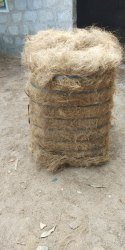 Coconut Coir, Packaging Size: 50kg