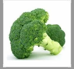 A Grade Green BROCCOLI, Packaging Size: 5 Kg