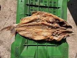 Dry Cat Fish