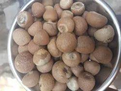 Betel Nut, 65 Kg