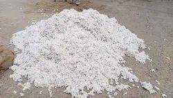 Amrit gold Cotton Seeds