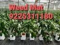 Ground Cover Or HDPE Unlaminated Woven Fabric Or Weed Mat