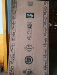 Eucalyptus Brown Golden Club 710 BWP, Thickness: 6to