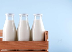 Fresh Milk, Bottle