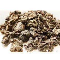Amla With Seed Powder (Phyllanthus Emblica)