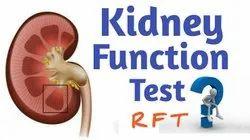 Kidney Test RFT