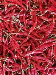 Natural Red Teja Supar Delux Chilli