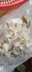 Oyster Mushrooms 1