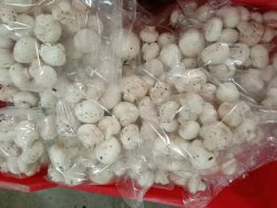 Nagpur Button Mushroom Fresh, Packaging Type: Box