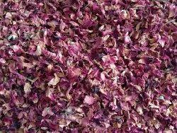 Red Dry Rose Petals