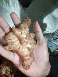 A Grade Brown Fresh Ginger, Gunny Bag, Packaging Size: 50 Kg