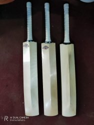 Gymnasto Standard Handle English Willow Cricket Bat