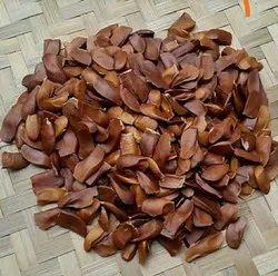 Natural Mahogany Seeds, For Plantation