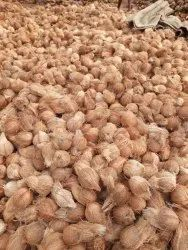 Mostly A and B GRADE MIXER Dindigul & Madurai Coconut, Packaging Size: 50 Kg, Coconut Size: Large