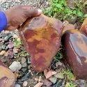 Natural OM Narmadeshwar Shivling
