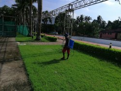 Spray Herbal based Garden Pest Control Service