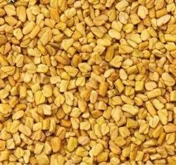 Fenugreek Seed, Packaging Type: PP Bag, Packaging Size: 1 Kg