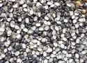 Kastakari Black Urad Dal, Maharashtra, Packaging Size: 1 Kg