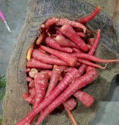 A Grade Pan India Fresh Carrot, Packaging Type: Gunny Bag, Packaging Size: 20 Kg