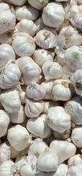 A Grade New Garli, Garlic Size: 4.0 To 5.0 Mm, Until