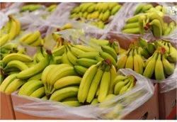 8910inch Length G9 Cavendish Banana, Packaging Size: 13 kgs, Packaging Type: Carton