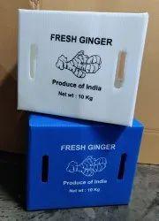 Ginger 5 &10 Kg Plastic Corrugated Box
