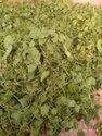 Brahmi Mandukparni Dry