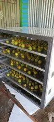 Athi Fruits Plant